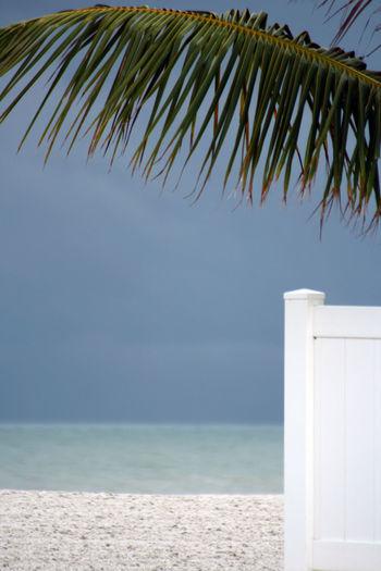 Blue Florida Life Gulf Of Mexico Horizon Over Water Madeira Beach Florida Nature No People Outdoors Saint Petersburg Florida Scenics Sea Sky Tranquility Tropical