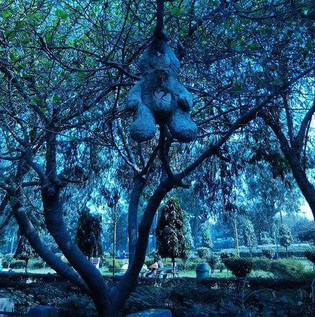 Horrorville 👹👻👾👽☠💀👺 Horrific Hanged Teddy