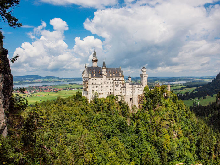 Tree Plant Built Structure Cloud - Sky Architecture Sky Nature Building Exterior Growth Green Color History The Past Beauty In Nature Day Mountain No People Building Scenics - Nature Outdoors Castle Neuschwanstein Bavaria