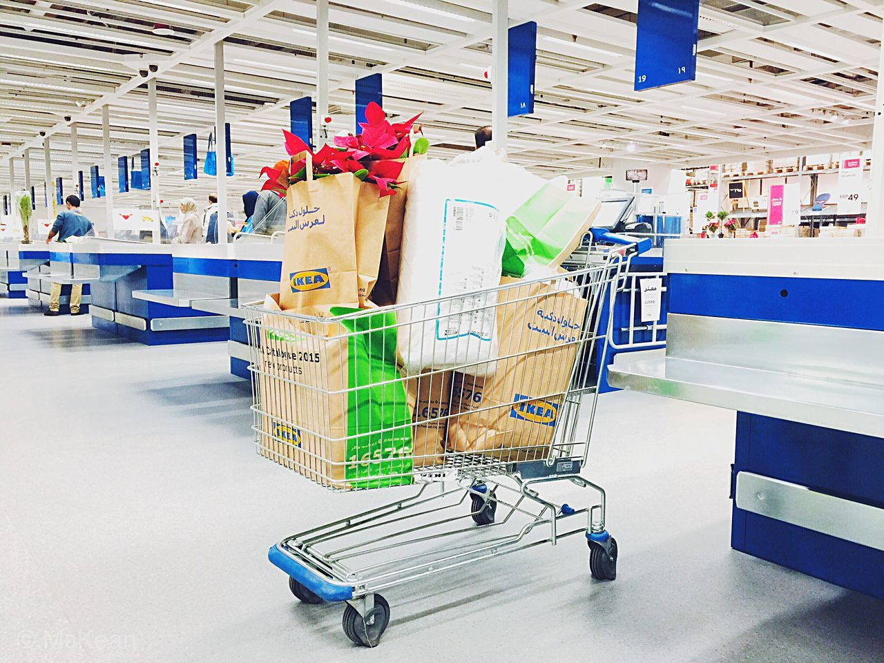 VIEW OF SHOPPING CART IN SHOP