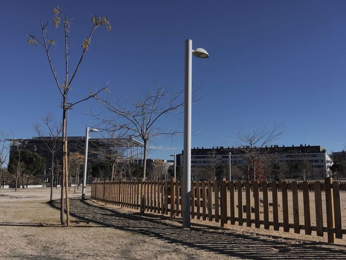 Park Farola Faroladedia Farolas De Luz  parque Fence Bare Tree Clear Sky Outdoors No People Day Sky Tree Parque  Valla Fences
