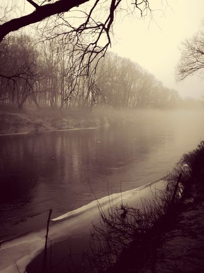 smoke on the water #river #smoke #evening Winter Tree No People Nature Outdoors Day Water Bare Tree Beauty In Nature Sky