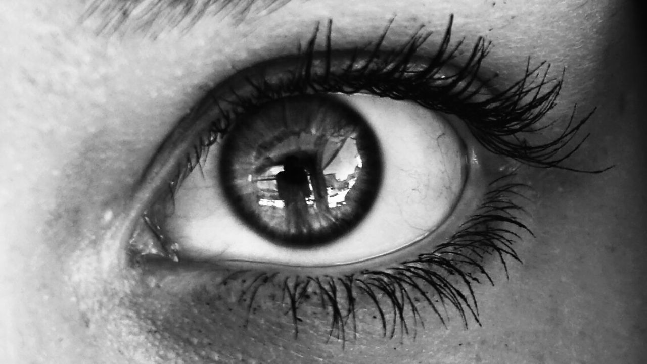 human eye, eyelash, human body part, eyeball, eyesight, one person, real people, sensory perception, iris - eye, close-up, looking at camera, eyebrow, portrait, indoors, day, adult, people
