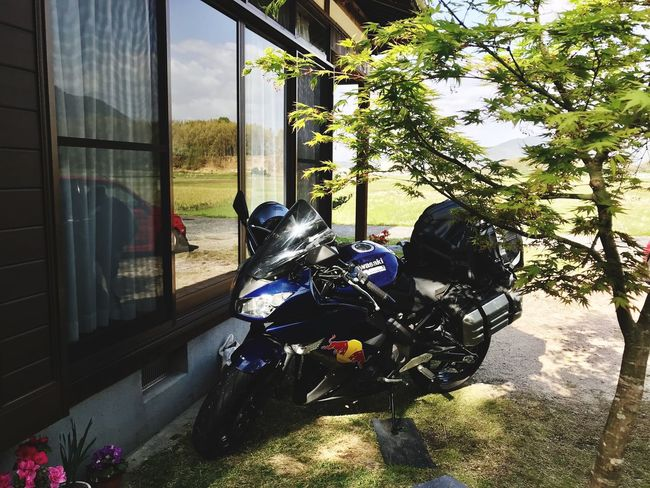 連休! #MOTORCYCLE Sunlight Nature Window