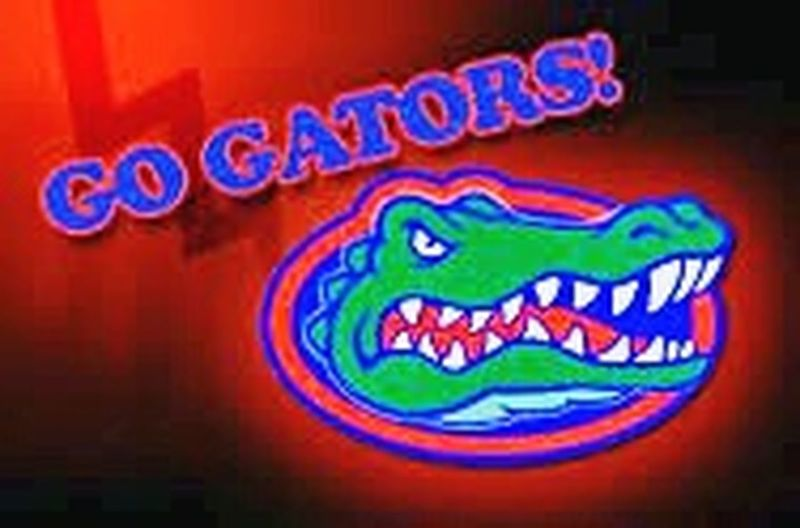 The color of Sport. Go Gators! Multi Colored Close-up Communication Text Outdoors Colorful Creativity Vibrant Color Green Color No People Full Frame