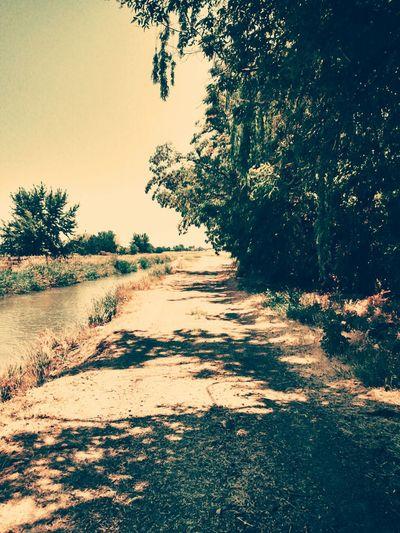 Walking by river. Walking Strollin Relaxed Like