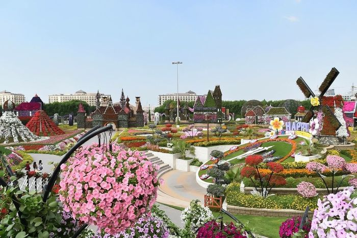 miracle of garden Miracle Garden Dubai Clear Sky Freshness Tourism Plant Multi Colored Day Vacations Travel Destinations Variation Fragility Outdoors Blue Crowd Nature Beauty In Nature Person Garden In Bloom Pink Color
