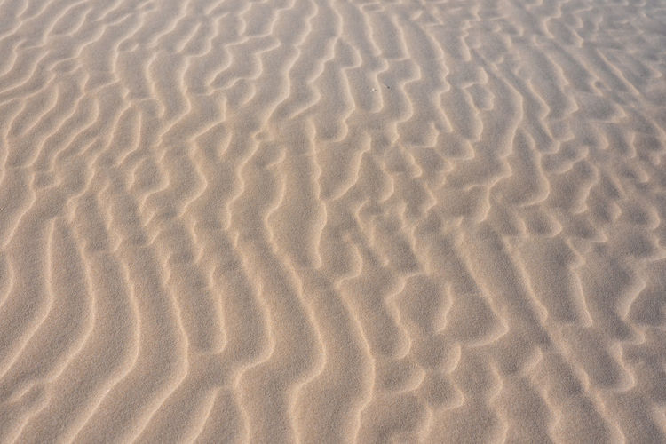 Rippled Sand Land Pattern Backgrounds Full Frame Wave Pattern Beach Sand Dune Natural Pattern No People Nature Tranquility Beauty In Nature Climate Arid Climate Scenics - Nature Desert Day High Angle View Rippled Outdoors