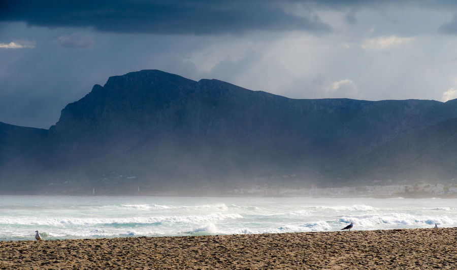 Krull&Krull Images Mallorca Mallorca Seagulls Beach Beach Day Beauty In Nature Cloud - Sky Day Landscape Mountain Mountain Range Nature No People Outdoors Scenics Sea Sky Son Serra De Marina Storm Cloud Stormy Tranquil Scene Tranquility Water Wave Been There.