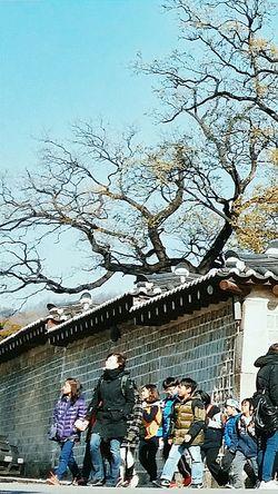 I love seeing kids go out a school trip. Class Trip ? Children near Changdeokgung Palace Seoul Korea