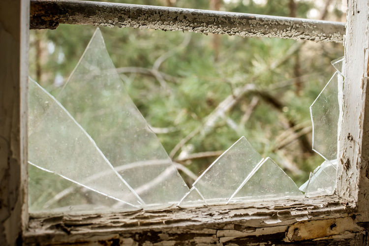 No People Damaged Close-up Day Focus On Foreground Broken Spider Web Plant Abandoned Fragility Nature Outdoors Metal Window Old Vulnerability  Shattered Glass Leaf Plant Part Destruction Ruined Demolished