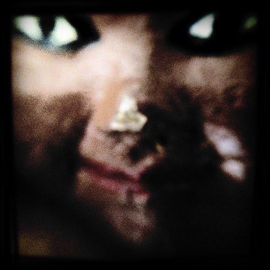 Close-up Creative Editing Dark Face Inhuman Macro Portrait Selective Focus