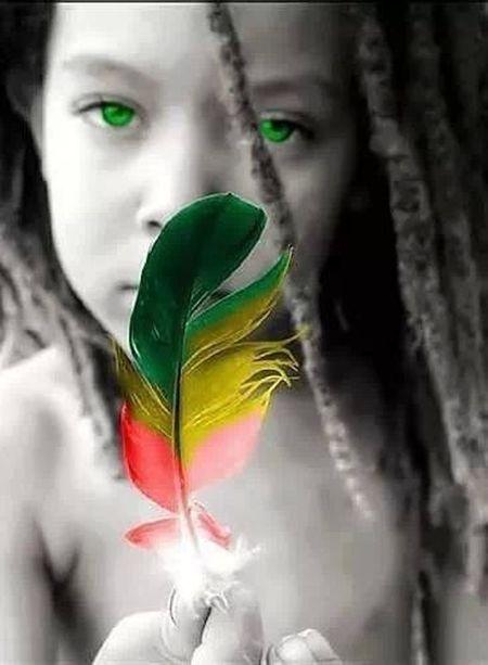 Paz Paz & Paz , Tagsforlikes Likeforlike Fallow Me Photolikes #love #cute #photo #likes #likeforlikes #likeforfollow #me #followfollowfollow #likesforlikes #likeforshoutout #trocolikes #like #beautiful #frases #instalike #sdv #instagood #follow #followmeplease #insta #like10like #instalove #color #hmu #pe :3