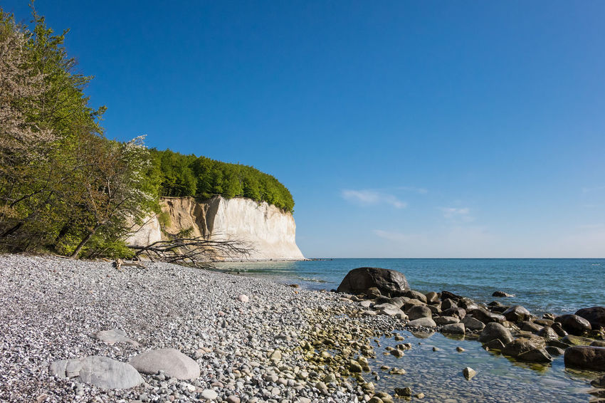 Baltic Sea coast on the island Ruegen, Germany. Baltic Sea Beauty In Nature Boulder Chalk Cliffs Coast Day Holiday Journey Landscape Nature No People Outdoors Rocks Ruegen Island Scenics Sea Shore Sky Stones Tourism Travel Destinations Trees Vacation Water White Cliffs