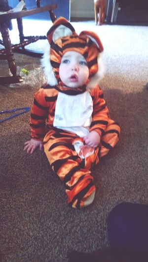 Halloween Firsthalloween Tiger Childhood Babyhood