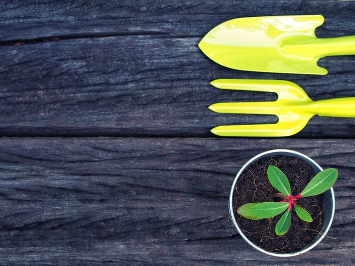 Directly Above Shot Of Yellow Gardening Equipment By Potted Plant On Wooden Table