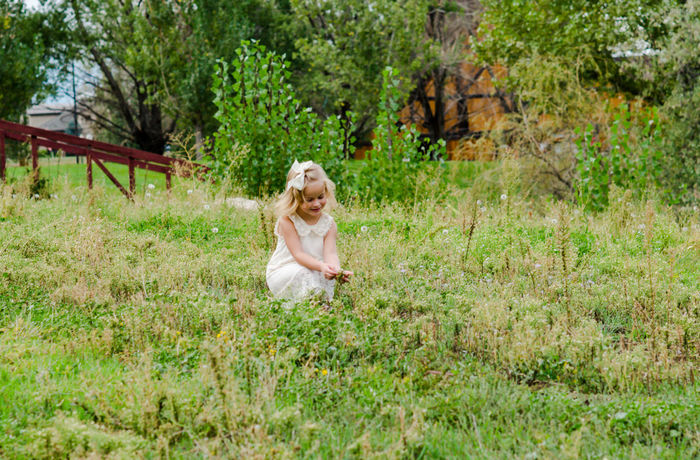 From a family photo shoot I did a couple months ago. Little Girl Fields Green Nature Peaceful Beauty Outside