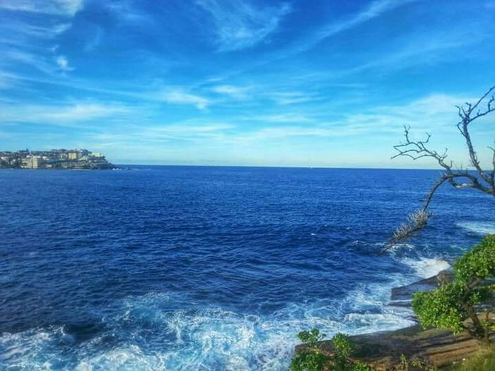 Sydney Coogee Beach Cliff Walk To Bondi OceanWaves Waves, Ocean, Nature Eye4photography  Seaside