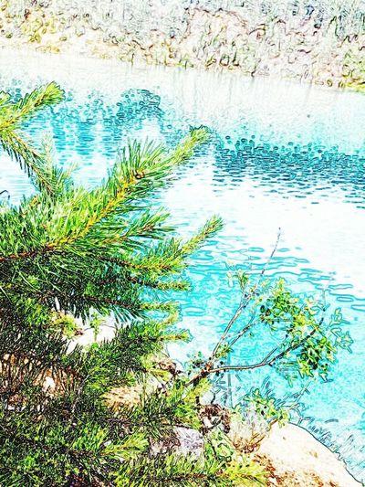 Water Nature Beauty In Nature озеро природароссии красотарядом