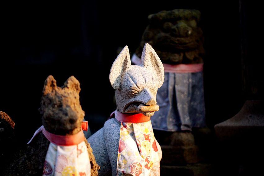 kitsune.fox.shrine