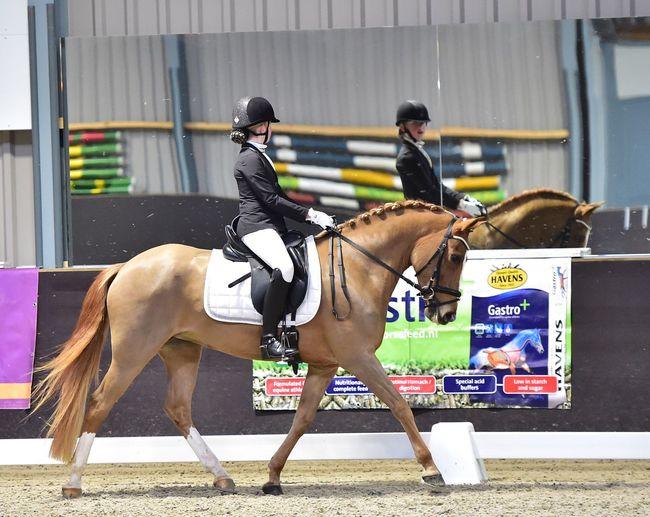Horse Dressage Dressagehorse Dressage Competition Dressagerider Pony Daughter EyeEm Best Shots Mirror Picture EyeEmNewHere Mirror