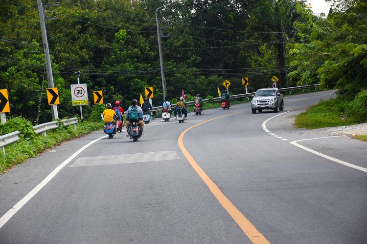 vespa Tree Road