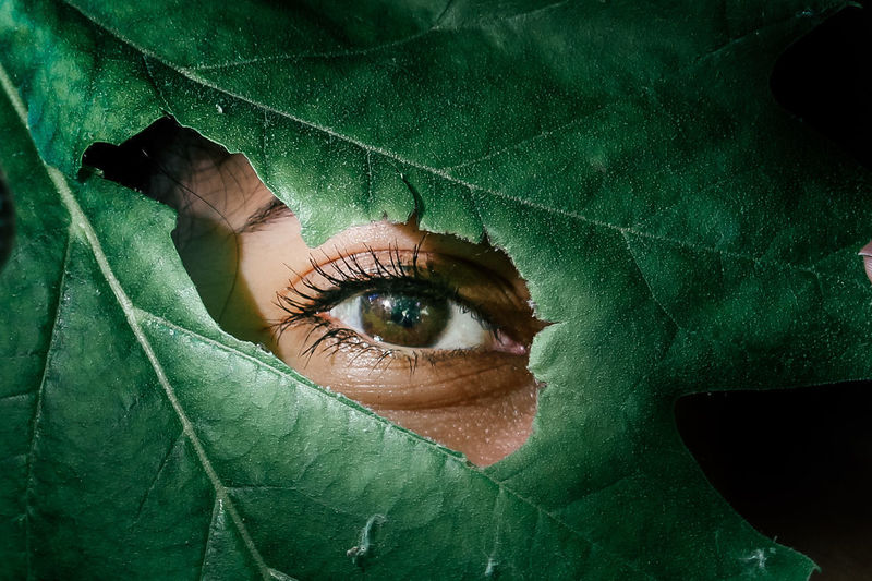 Close-up portrait of woman with green leaf