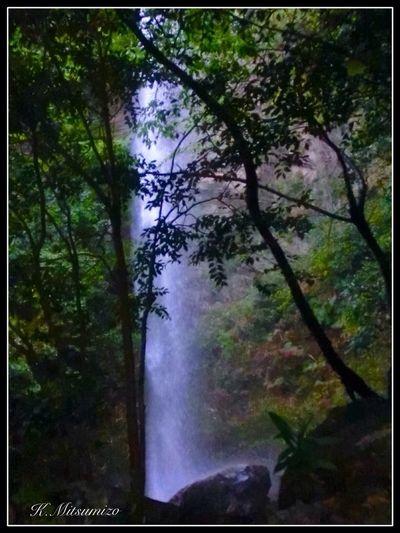 有田町竜門峡で 雨の後 半日位見ることができる滝です。 滝 Waterfall Tadaa Community Nature Photography 有田 竜門 Arita 佐賀 滝 黒髪山 竜門峡