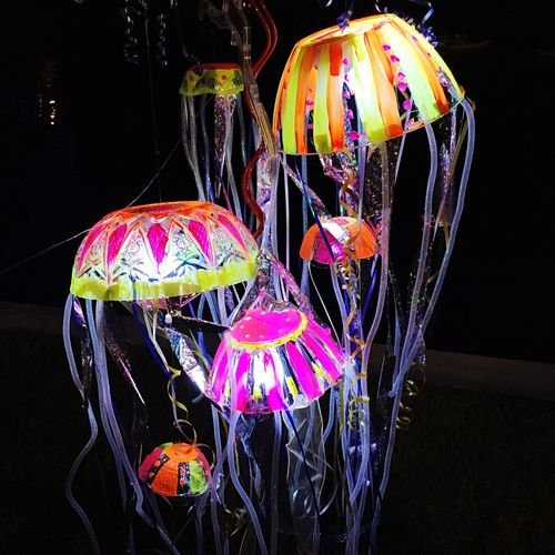 Art Hanging Multi Colored Lantern Close-up Decoration Dark Man Made Object Variation Ribbon Pink Color Creativity Hobbies Outdoors Retail  Large Group Of Objects Jellyfish Seacreature Sea_collection New Talents