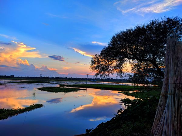 Reflection Tree Water Tranquil Scene Sky Beauty In Nature Scenics Nature Sunset Lake Tranquility Cloud - Sky Idyllic Outdoors No People Growth Day Mobilephotography Eyeembangladesh @anickchowdhurymp EyeEmNewHere