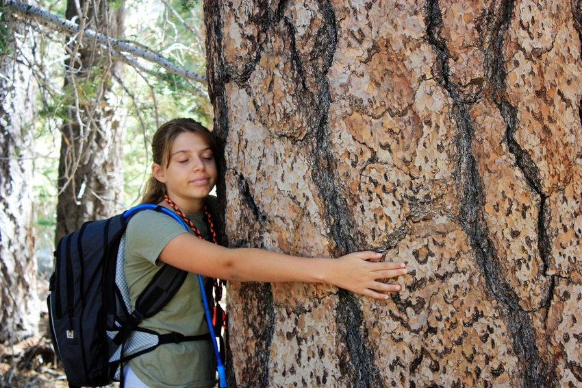 Tree hugger Adventure Beauty In Nature Climbing Leisure Activity Lifestyles Nature One Person Outdoors Real People Tree Tree Hugger Tree Trunk Young Adult
