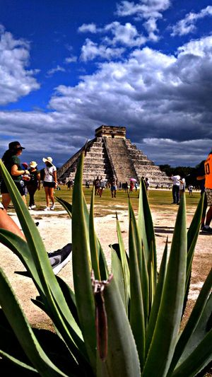 Chichen itza Maravillas De La Naruraleza Maravillas Del Mundo Growth Cactus Sky Outdoors Nature Day Large Group Of People People Adult Adults Only Only Men Moving Around Rome Modern Workplace Culture EyeEmNewHere