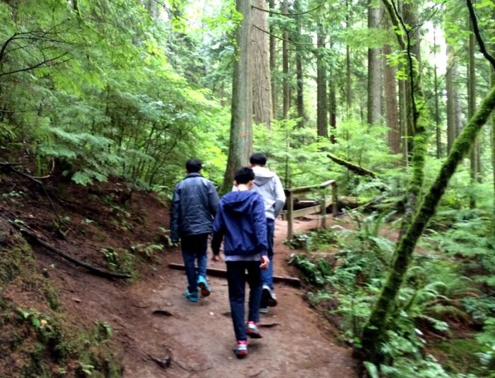 Forest Walking Togetherness Rear View Vacations Father And Son Time Father And Sons Hiking Outdoors Quality Time People And Places