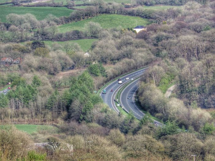 Photography Taking Photos Check This Out Landscape Airial View Trees Roads In The Forest Road Road Trip Unusual Perspective