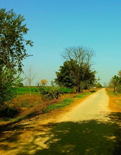 Country Road Trible Exposure Indian Village Lifestyle :) Mother Nature Free Roaming New Experience