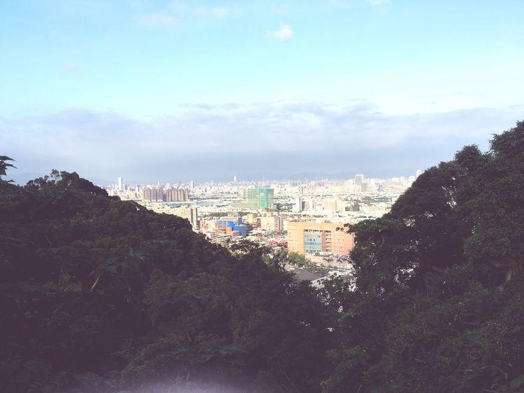 山上 Taiwan 六月 風景 泰山 Taiwanese 臺灣 新北 June NewTaipeiCity 台湾