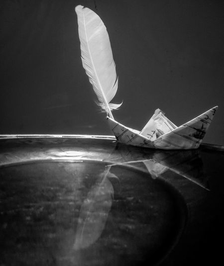 Close-up of paper boat and feather on table