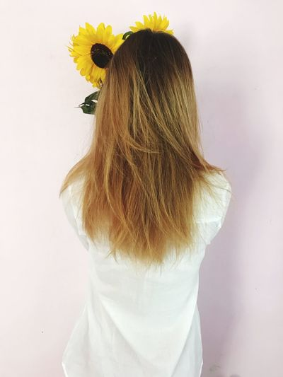 Rear View Of Woman Holding Sunflowers While Standing Over Pink Background