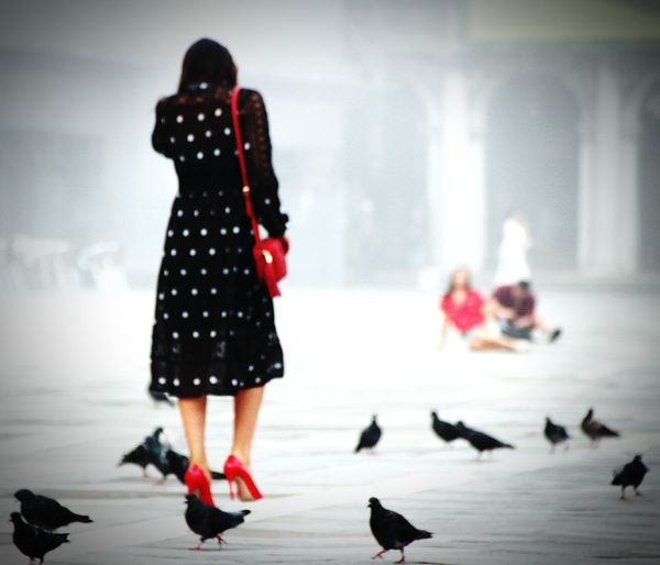 Fog Foggy Morning Tadaa Community Picoftheday Amazing View Sexygirl High Heels Shoes Of The Day Red Shoes Italy Venice Venezia Europe Allone  Fashion Pidgeon  Warm Clothing City Full Length Photography Themes Winter Cold Temperature Camera - Photographic Equipment Fashion Show Overcoat Model