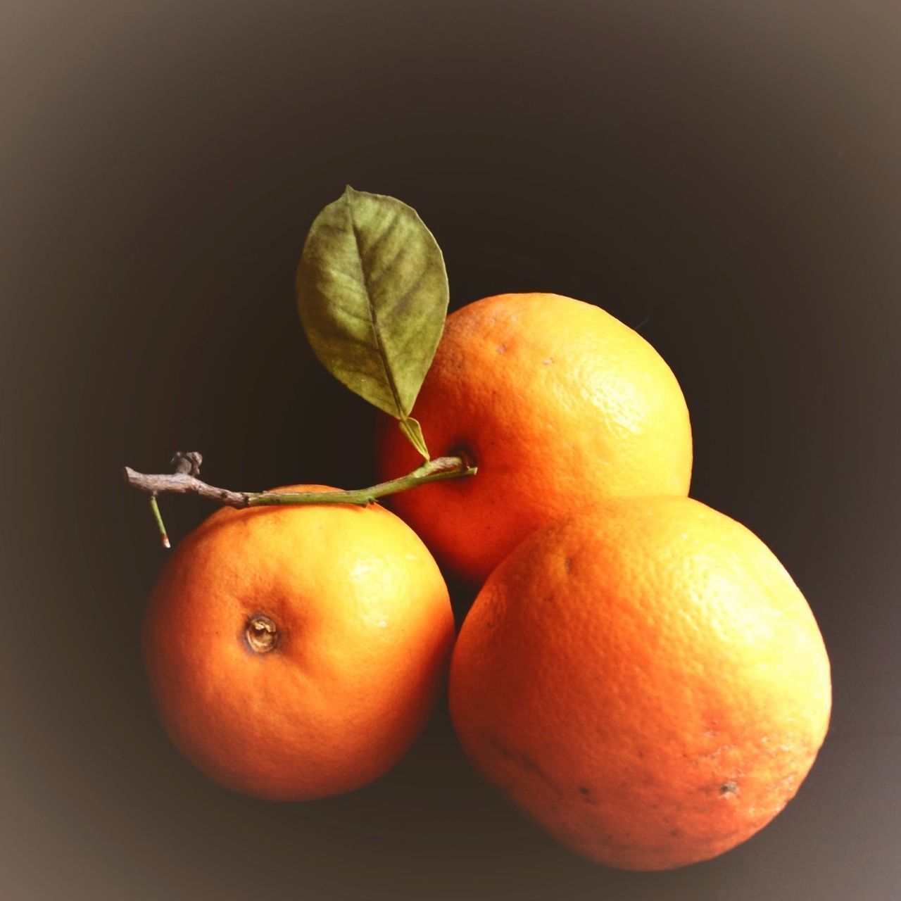 High Angle View Of Oranges Against Colored Background