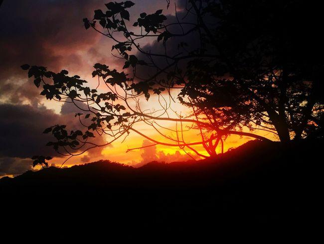 Catching Fire Burning Sunset Sunset_collection Sunset Silhouettes EyeEm Nature Lover EyeEm Best Shots Sky And Clouds Eye4photography  Eye4enchanting EyeEmBestPics CaptureTheMoment Eyeem Philippines Taking Photos IPhoneography Beautiful Memories