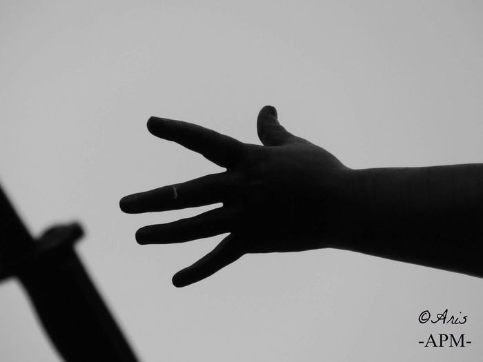 Human Hand Human Body Part Human Finger Gesturing Adults Only Men Adult Only Men Close-up Silhouette One Person Indoors  Day One Man Only People Picture Aris Philoxene Meyborn Human Body Fragility Francephotographer Photography Black & White Photography Old Architecture