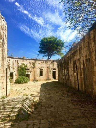 Fortress Mamula Old Buildings Old Ruin Architecture History Cloud - Sky Sky The Past Sunlight Ancient Day Ancient Civilization Castle Travel Destinations Abandoned No People Outdoors Low Angle View Tree