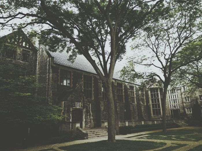 Uoft Trinity College Toronto University Of Toronto Green royal charter Tree Outdoors No People Day Sky Nature Grass Architecture