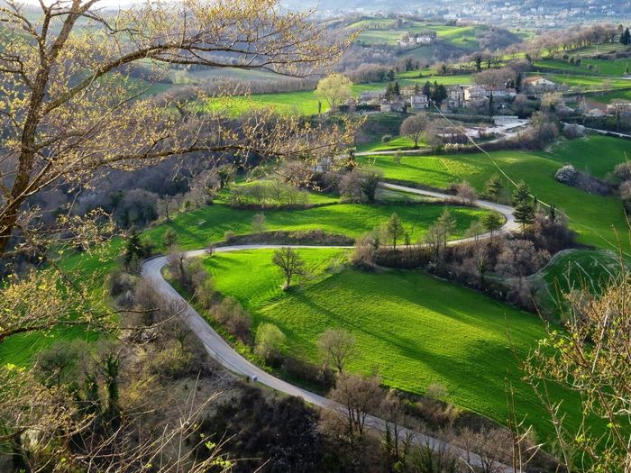 Winding Road in the Green Hills of Central Italy Enjoying The View Landscape_photography Landscapes With WhiteWall View From Above