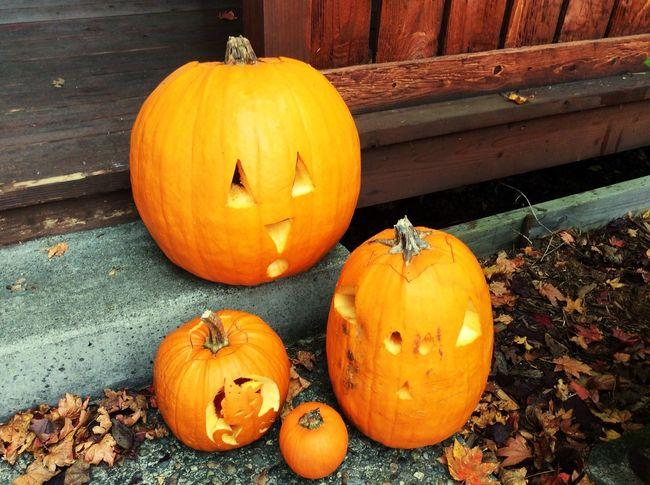 Pumpkin Halloween Autumn Celebration Anthropomorphic Face Orange Color Holiday - Event Vegetable No People Jack O Lantern Day Outdoors Jack O' Lantern Food Nature Freshness Close-up
