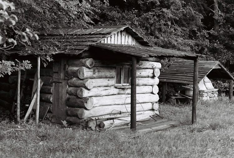Log Cabin Built Structure Architecture Outdoors No People Abandoned Wood - Material Day Building Exterior Tree Nature Log Cabins Log Cabin Exter Relaxing Cabin In The Woods Nature Grass Camping CampLife Ilfordfilm Creepy Places Creepy House Creepy Horror Photography Horror