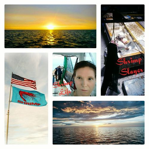 Work Life Driving Captain Sky Colage Of Photos Yellow Blue Red Flag Shrimping Working Young Female Human Hand Beach Sunset Horizon Over Water Ocean Calm Seascape Coast Stars And Stripes National Flag