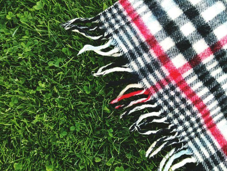Last days of summer. Picnic Time ♡ Picnics Picnic Picnic Blanket Grass Grassy Grass Area Blanket