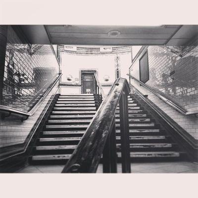 Balham Tube Station Balham Pictapgo Stairs IPSContest love tweegram instagood photooftheday iphonesia instamood igers instagramhub picoftheday instadaily bestoftheday igdaily instagramers webstagram follow statigram life
